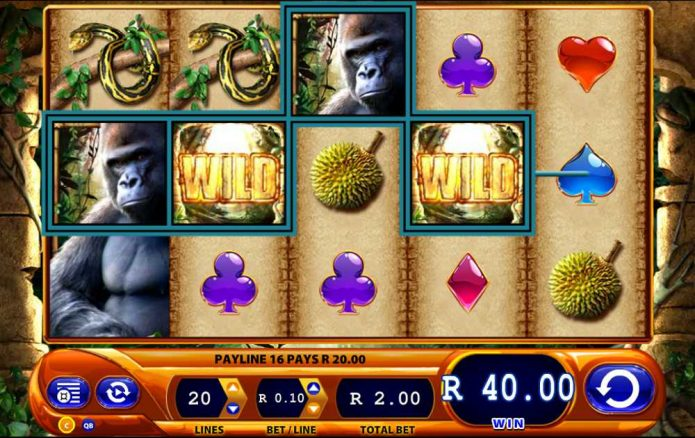 Amazon Queen Slot 1