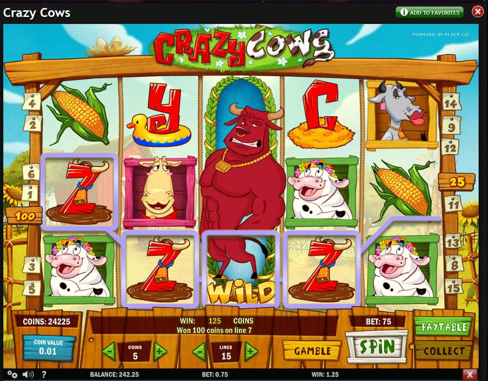 online slots casino crazy cash points gutschein