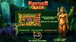 Panther Queen Slot Game Rules