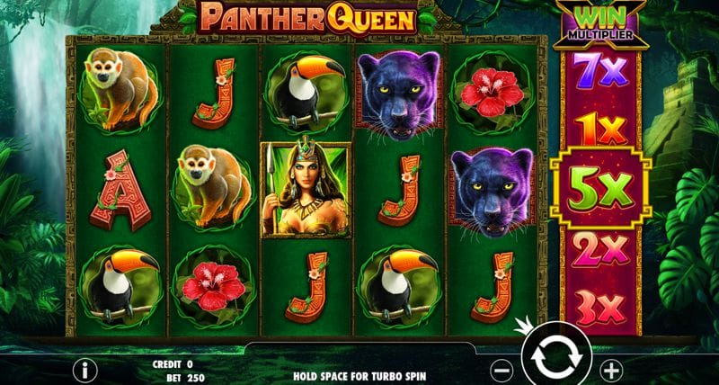 Panther Queen Video Slot Game Review