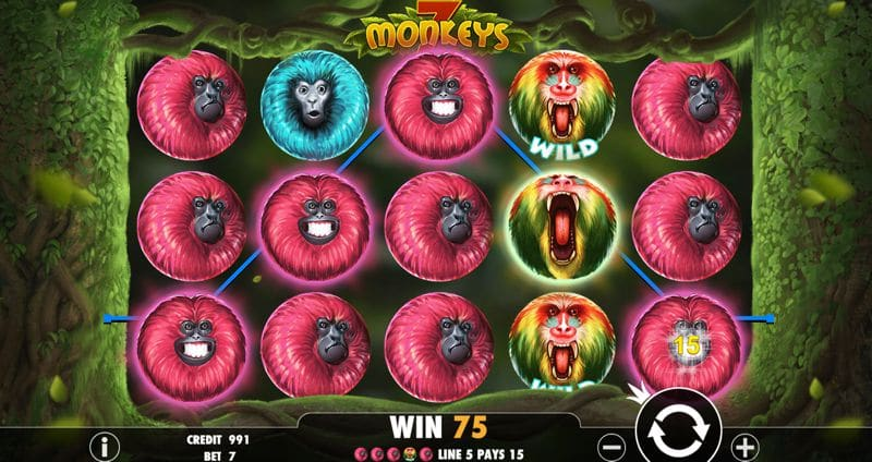 7 Monkeys Video Slot Game