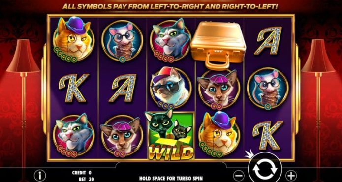 Catfather Part II Slot Game