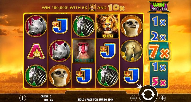 Hot Safari Video Slot Review