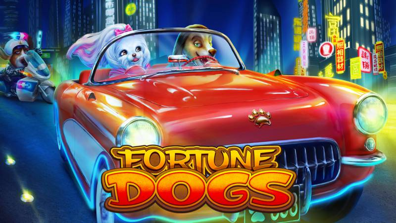 Fortune Dogs is a Fun Slot Game from Habanero