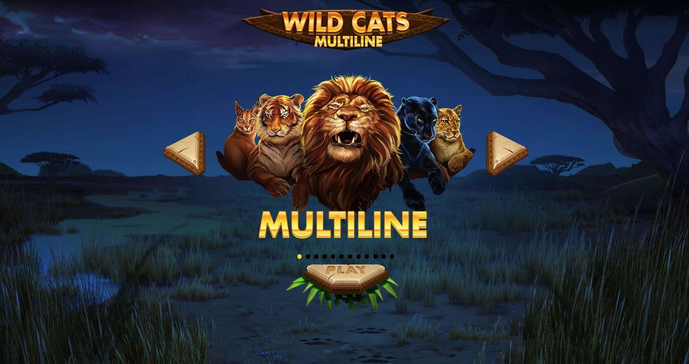 Wild Cats Multiline Slot Game