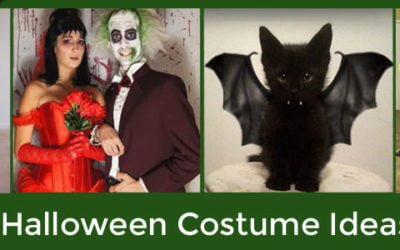 Funny, Scary and Downright Cute Halloween Costume Ideas