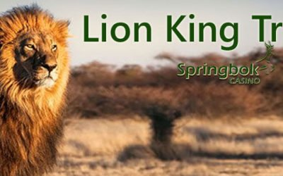 Springbok Casino Celebrates Disney's New Lion King Movie