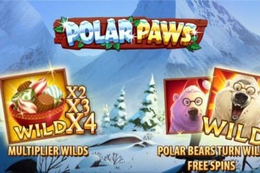 Polar Paws Slot Game