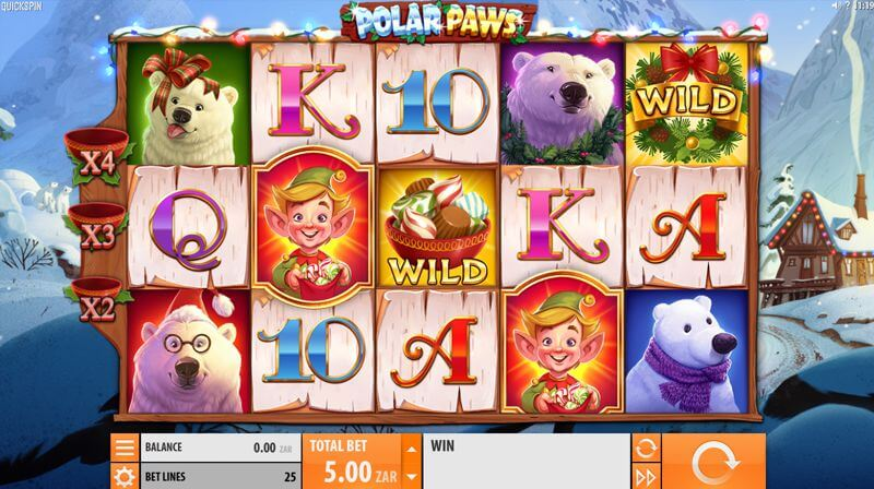 Polar Paws Video Slot Game