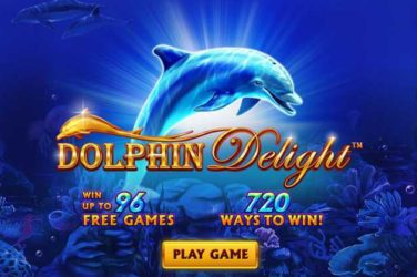 Dolphin Delight Slot Game