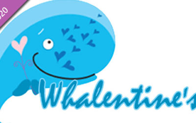 Celebrate Whalentine's Day with Incredible Whale Facts at Springbok Casino